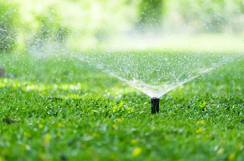 Irrigation Inspections